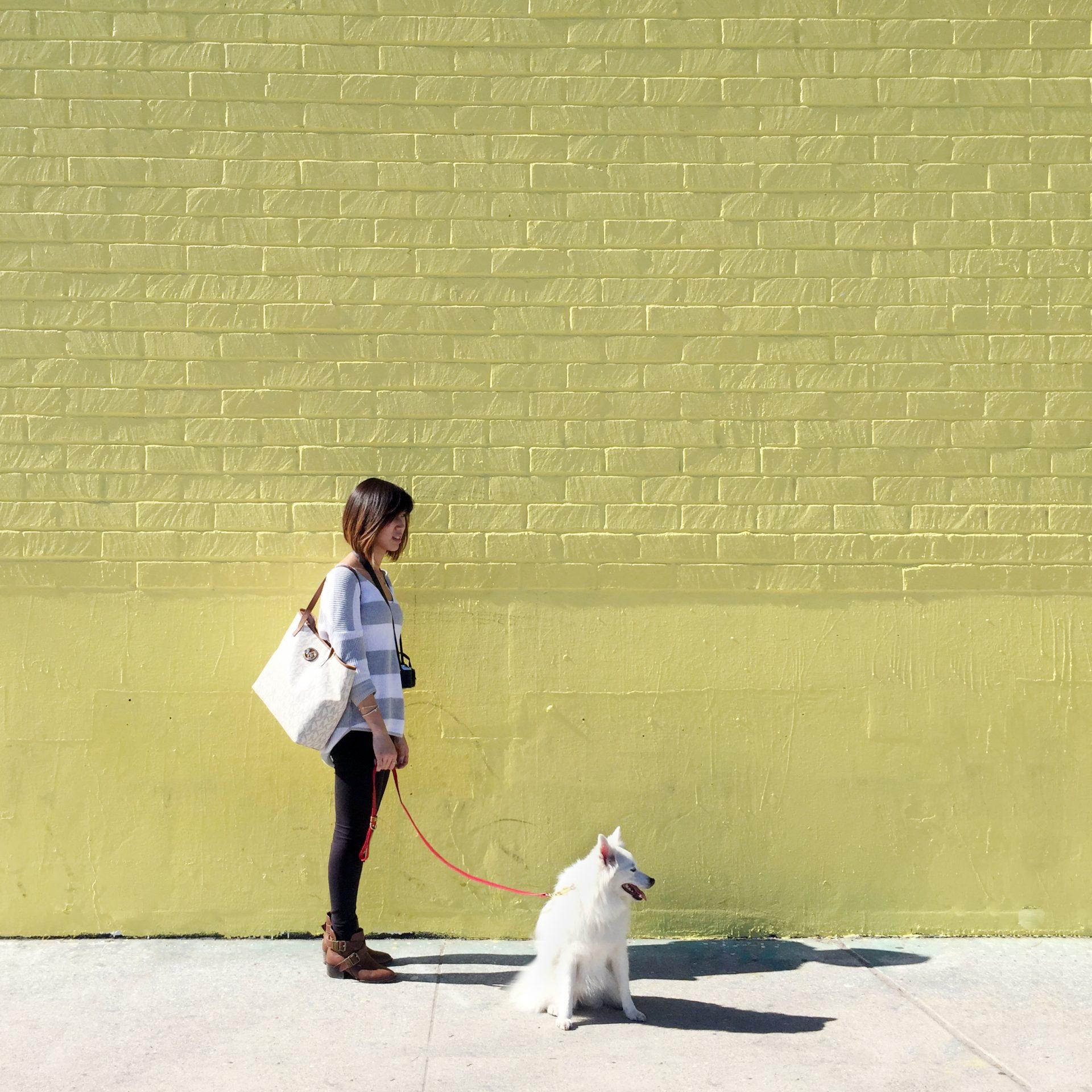 yellowwall
