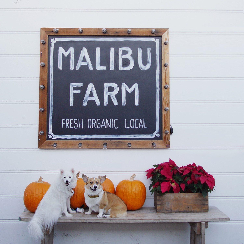 malibu-farm-sign